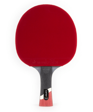 8 Best Ping Pong Paddle Reviews 2019 That Ll